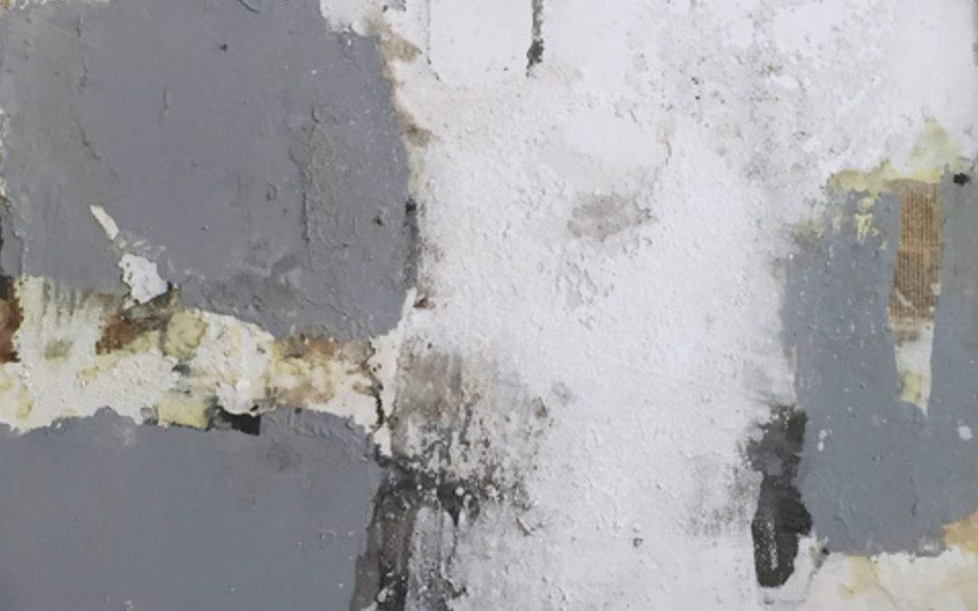 Exposition de peintures de l'artiste Ines HILDUR